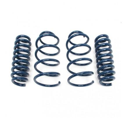 Dinan Performance Spring Set - D100-0926