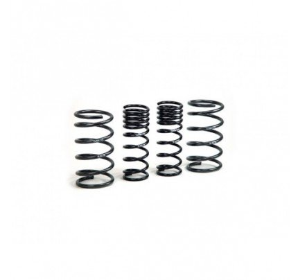 H&R RSS Coil Over Springs (Springs Only)