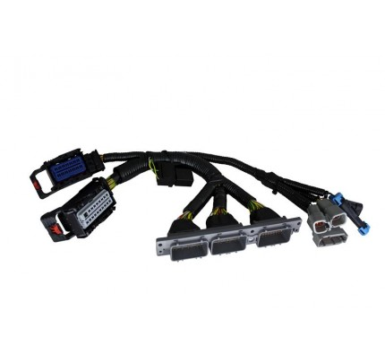 AEM Electronics Infinity 6/8h Plug & Play Jumper Harness