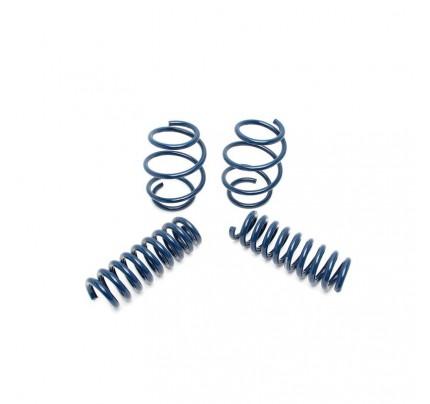 Dinan Performance Spring Set - D100-0909
