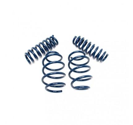 Dinan Performance Spring Set - D100-0917
