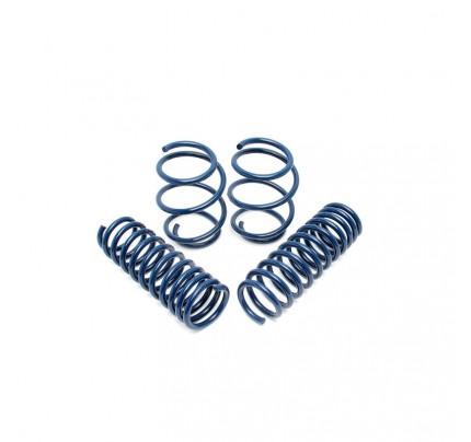 Dinan Performance Spring Set - D100-0913