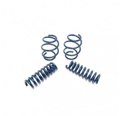 Dinan Performance Spring Set - D100-0912