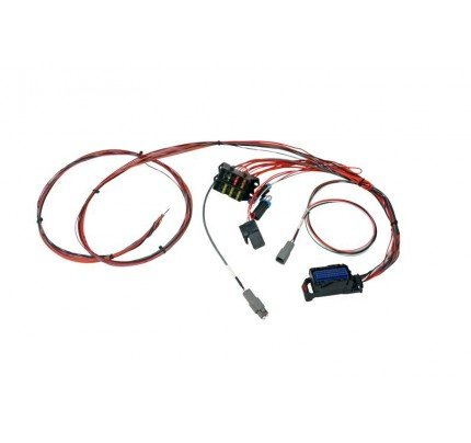 AEM Electronics Infinity-6/8h Mini-Harness